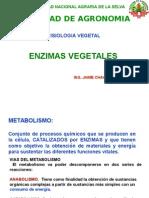 7_clase_enzimas_2014_1