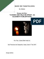 Ensayo-Libro_Cuando Una Vela Se Apaga