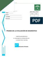 PED_cono08-1