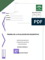 Evaluación de Diagnóstico 2006 -2007