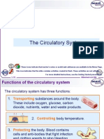 SLAC Circulatory System