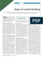 Flanagan Wound Healing
