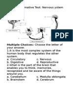 Summative Test 2.1 Nervous System for Notebook