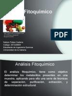 Semillero 1.pptx