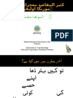 Moringa Urdu