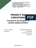 Proiect de Cercetare