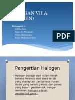 Halogen (Kelompok 2)