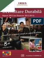 Raport Dezvoltare Durabila 2013 romana.pdf