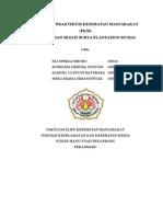 PROPOSAL PKM PT. PT. Meridan Surya Sejati Plantation
