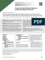Beryllium Executive Summary