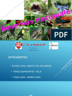reservas nacionales diapocitiva.pptx