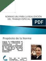 Normas Uru Para La Realizacion Del Trabajo Especial de Grado (1)