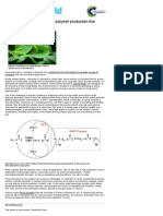 Spinach Chlorophyll Activates Polymer Production Line _ Chemistry World
