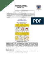 Cronograma Cx Plastica 2015a
