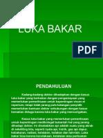 Luka Bakar.ppt