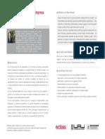 Gestión Estratégica de la Empresa Responsable y Sostenible
