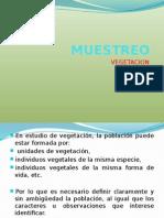 muestreo de vegetación.pptx