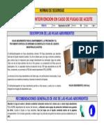 FNS 016 Intervencion en Caso de Fugas de Aceite