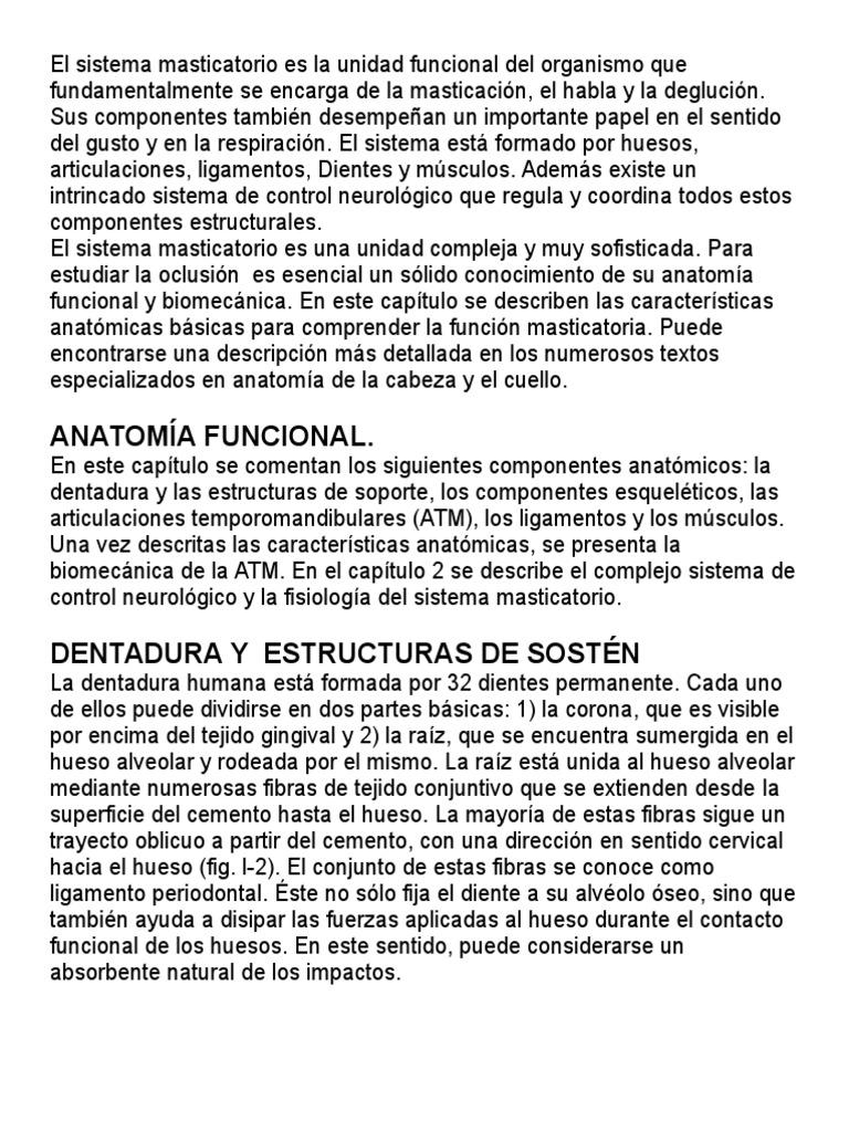 Moderno Los Músculos De La Atm Anatomía Colección - Anatomía de Las ...