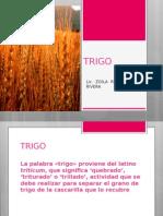 TRIGO-1.ppt