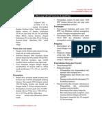 budidaya-tanaman-bawang-merah.pdf