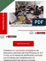 Planificacion Curricular Palo