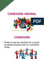 Cohesión Grupal