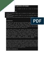Obtención de DNA genómico de hongos.docx