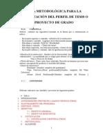 Guía Metodológica Para La Presentación Del Perfil de Ver 4