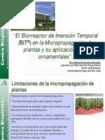 El Biorreactor de Inmersion Temporal en La Micropropagacion Ornamentales