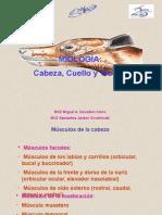Miología Cabeza Tronco