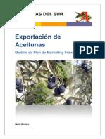Plan de Marketing Internacional Para La Aceituna de Yauca - Propuesta