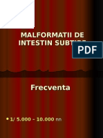 Malformatii Intestin subtire