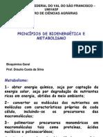 Bioenergética e Glicolise