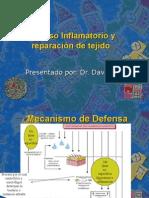 Clase 2 Proceso Inflamatorio y regeneración de tejido