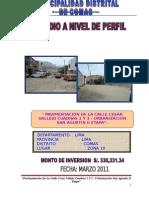 170053217 Perfil Tecnico Calle Cesar Vallejo