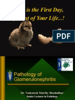 Glomerulonephritis (3)
