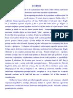 EGOIZAM esej 300.doc