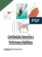 Contribuições Sensoriais a Performance Habilidosa
