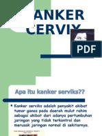 CA.serviks