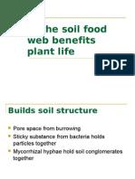 Soil Food Benefits