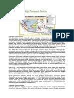 Cekungan Geologi Paparan Sunda (Nusantara)