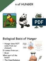 iii  hunger