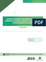 Sistematizacion de la Experiencia de la Gestora Comercial Be Green Trade