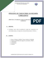 PERDIDA DE CARGA PARA UN REGIMEN TURBULENTO Y LAMINAR