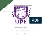 Universidad Politecnica de La Energia