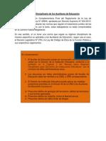 RDIE2_ Régimen Disciplinario de los Auxiliares de Educación.pdf