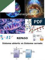Bioenergética Parte II