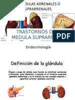 TRASTORNOS DE LA MEDULA SUPRARRENAL.pptx