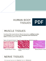 tissue-pp2